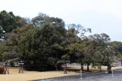 Akasaka Palast