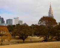 Meiji Jingu Park
