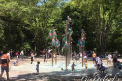 Showa Kinen Koen Rainbowpool