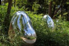 gl-acornforest01