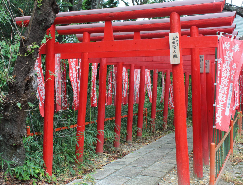 Saiken-ji Torii