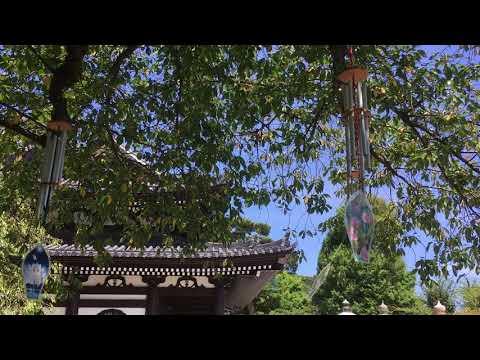Windspiel in Hasedera
